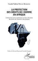 La protection des droits de l'homme en Afrique