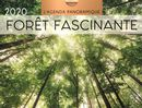 Agenda panoramique Forêt fascinante 2020