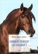 Comment pensent les chevaux?