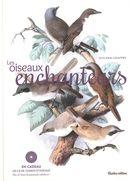 Les oiseaux enchanteurs
