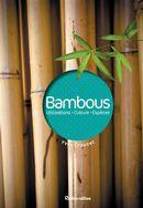 Bambous N.E.