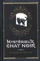 Mystérieux chat noir : Symboles & superstitions