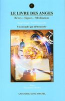 Le Livre des anges 06 : Rêves-Signe-Méditation, Un monde qui déboussole