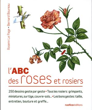 L 39 abc des roses et rosiers 250 dessins geste par geste distribution prologue - Dessin de rosier ...