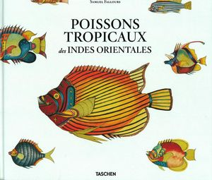 Poissons tropicaux des indes orientales distribution for Poisson tropicaux