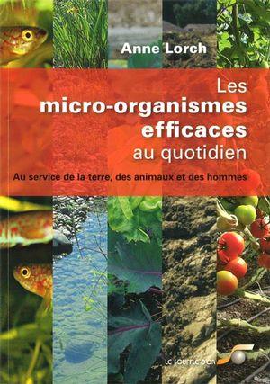 Micro-organismes efficaces auquotidien