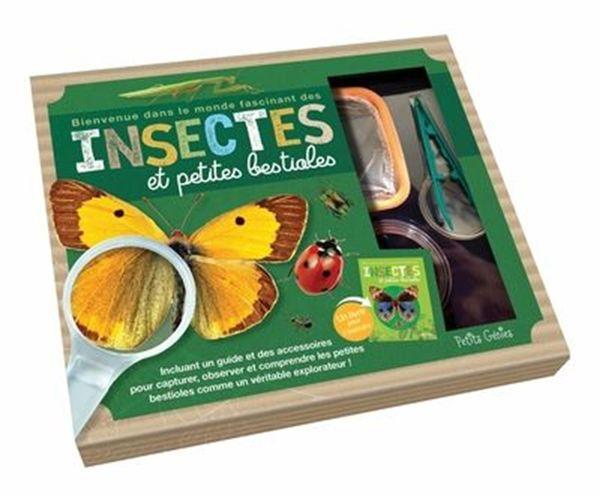 Insectes et petites bestioles