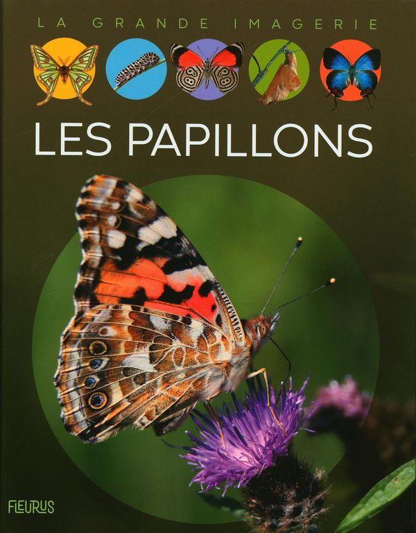 Les papillons N.E.