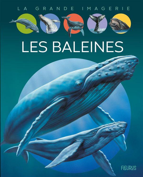 Les baleines N.E.