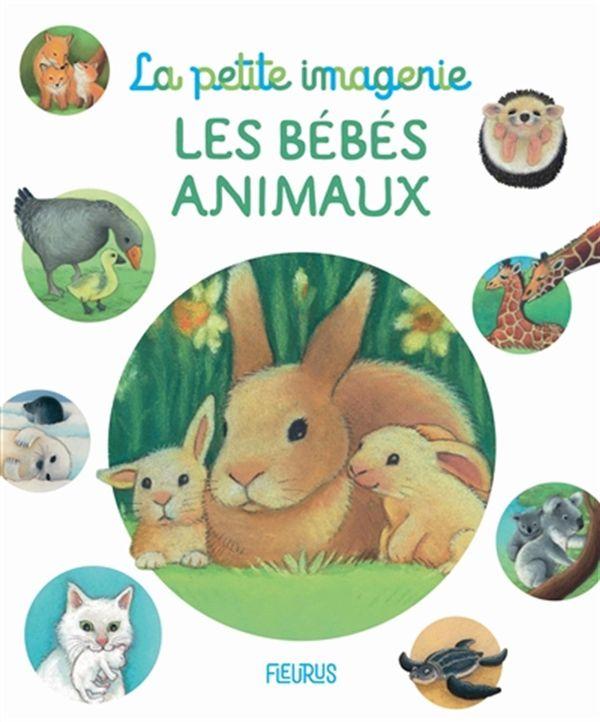 Les bébés animaux N.E.