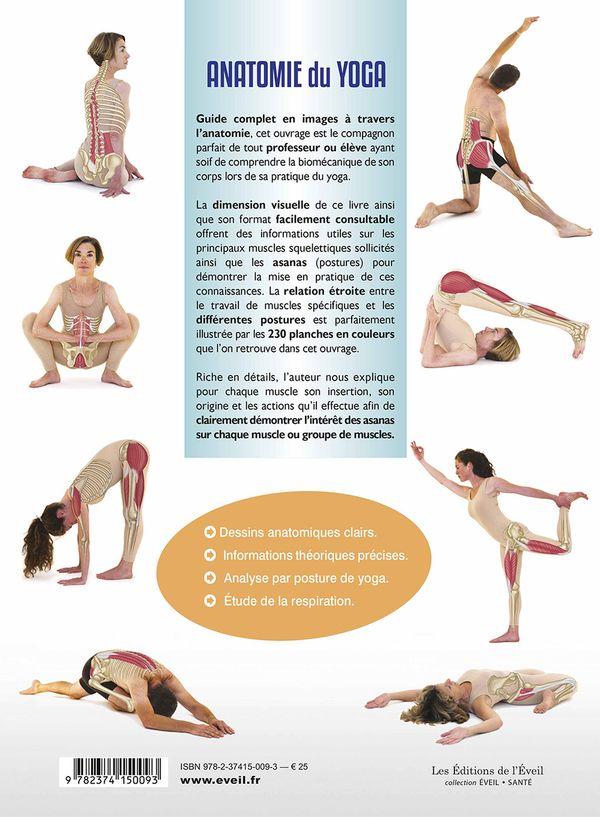 Charmant Anatomie Des Yoga Galerie - Menschliche Anatomie Bilder ...