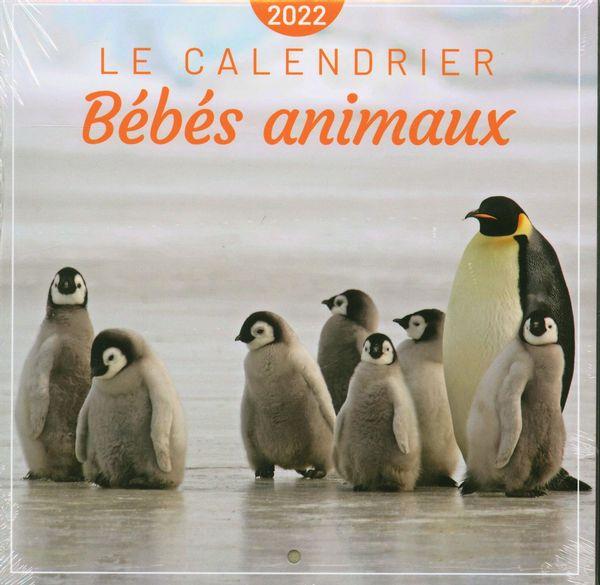 Le calendrier Bébés animaux 2022