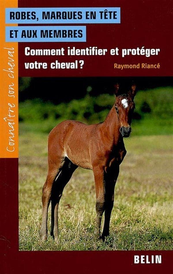 Robes, marques en tête et aux membres : Comment identifier et protéger votre cheval?