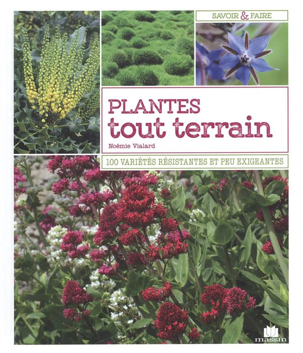 Plantes tout terrain