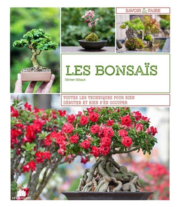 Les bonsaïs