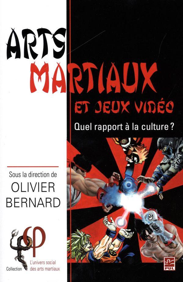 Arts martiaux et jeux vidéo : Quel rapport à la culture?