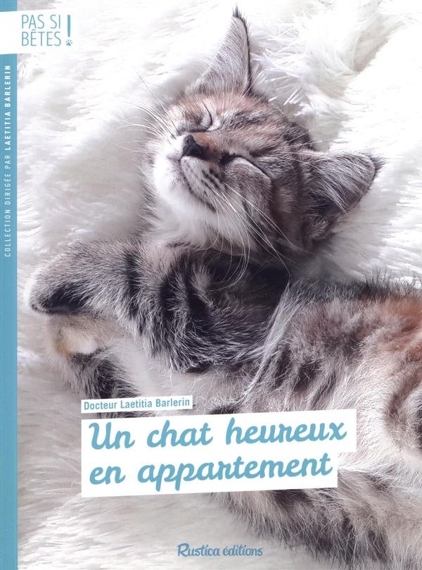 Un chat heureux en appartement N.E.