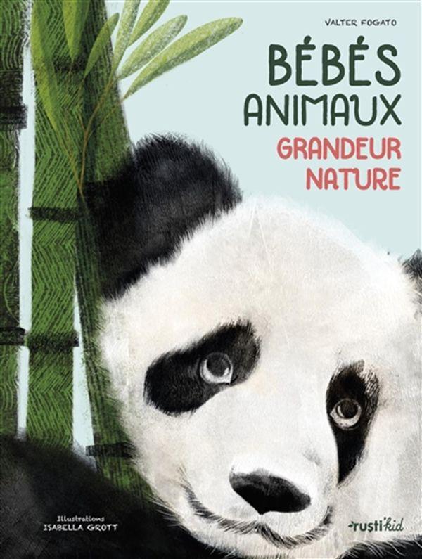 Bébés animaux, grandeur nature