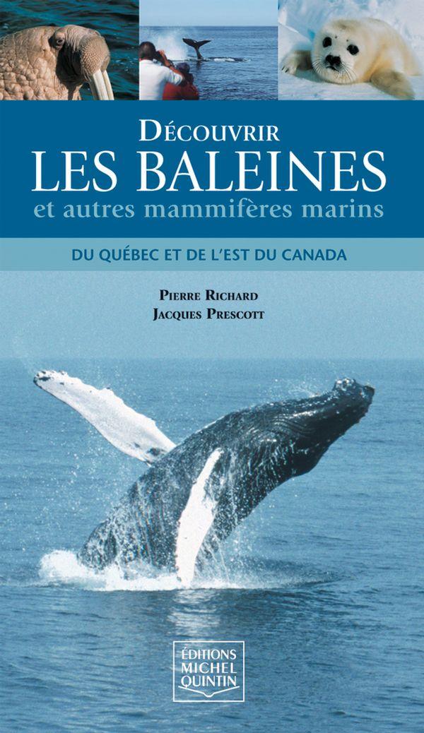 Découvrir les baleines et autres mammifères marins du Québec et de l'est du Canada