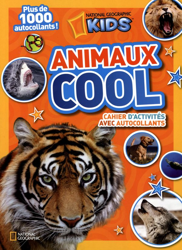 Animaux cool