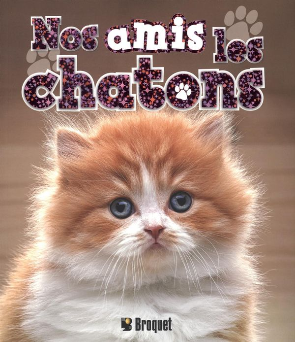 Nos amis les chatons
