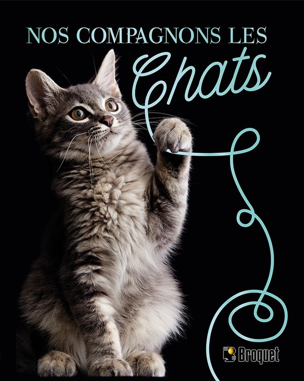 Nos compagnons les chats