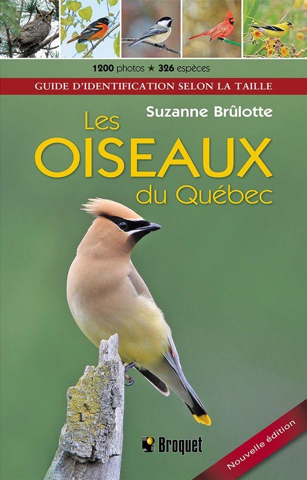 Oiseaux du Québec Les N.E.