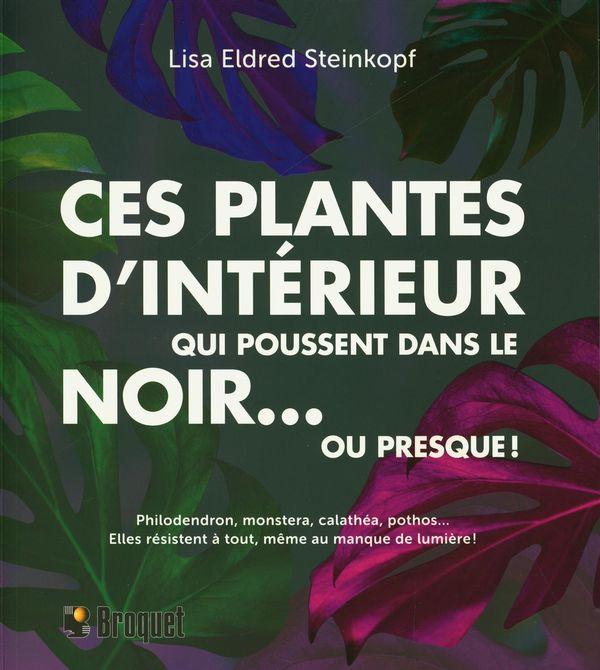 Ces plantes d'intérieur qui poussent dans le noir... ou presque!