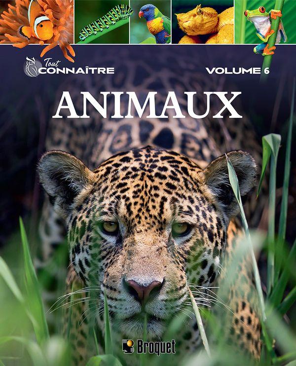Animaux 06