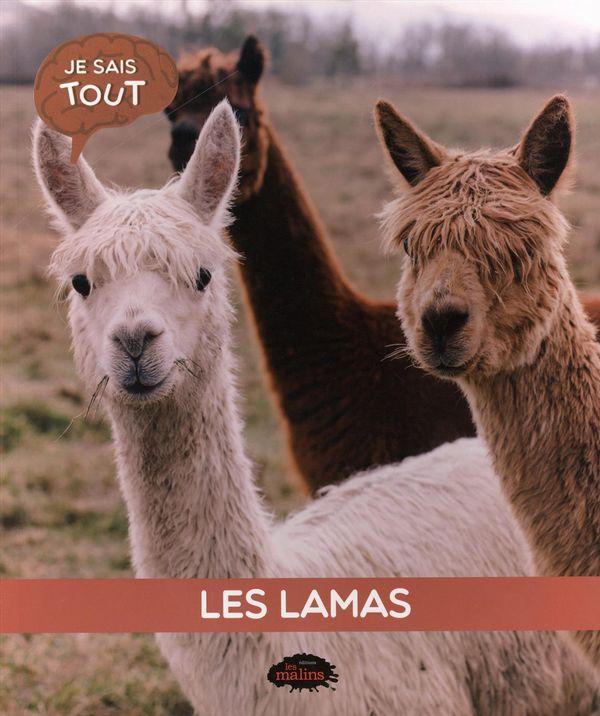 Les lamas