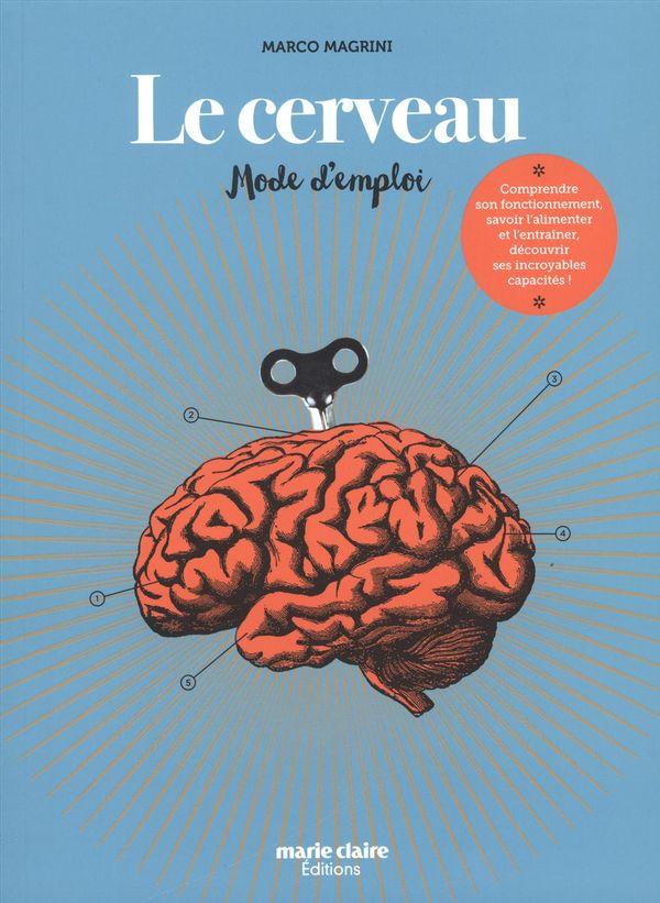 Le cerveau : Mode d'emploi
