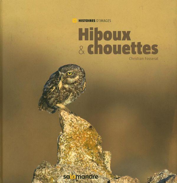 Hiboux & chouettes