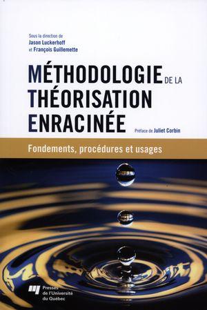 Méthodologie de la théorisation